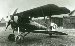 The plane of the German pilot Lange, who arrived a week later from Germany; shown with the tail painted to display the Swiss markings.